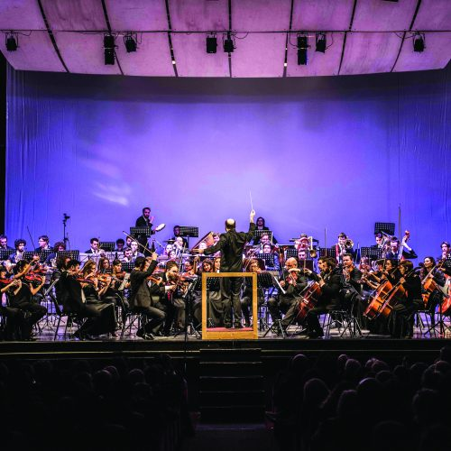 Social Concert | Orchestra Senzaspine - Teatro Duse