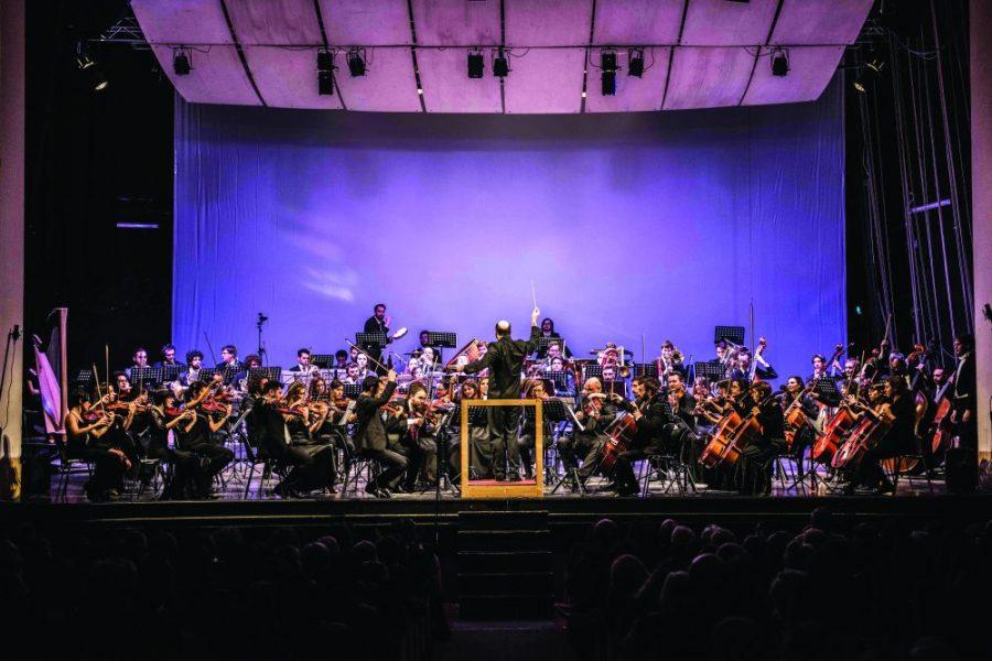 Social Concert   Orchestra Senzaspine - Teatro Duse