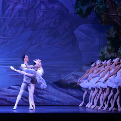 Il lago dei cigni | Russian Classical Ballet - Teatro Duse Bologna